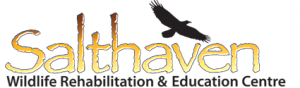 Salt Haven Wildlife Rehabilitation & Education Centre