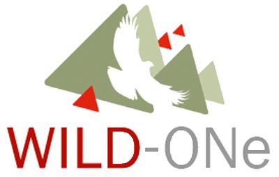 WILD-ONe