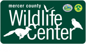 Mercer County Wildlife Center