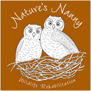 Nature's Nanny Wildlife Rehabilitation